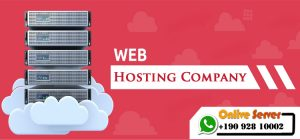 Qualities to Look Out for in a Server Hosting Company